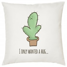 I Only Wanted A Hug Decorative Cushion