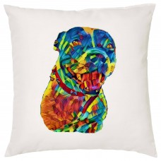 Personalised Rainbow Pet Portrait Decorative Cushion