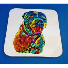 Personalised Rainbow Pet Portrait Coasters